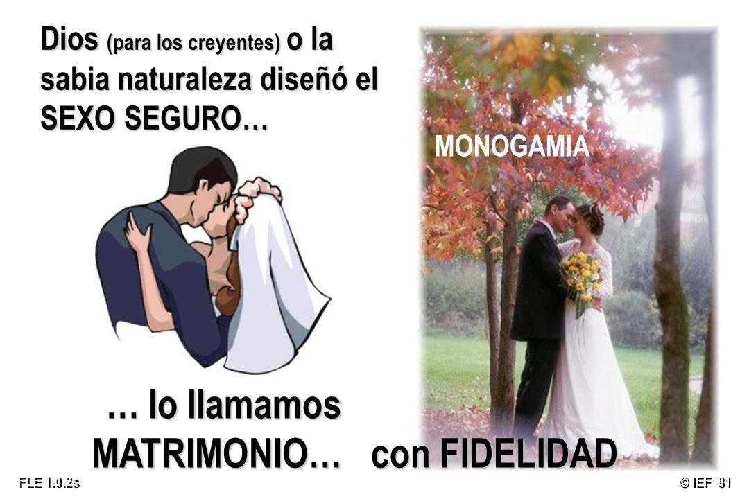 © IEF 81 FLE 1.0.2s Dios (para los creyentes) o la sabia naturaleza diseñó el SEXO SEGURO… … lo llamamos MATRIMONIO… MONOGAMIA con FIDELIDAD