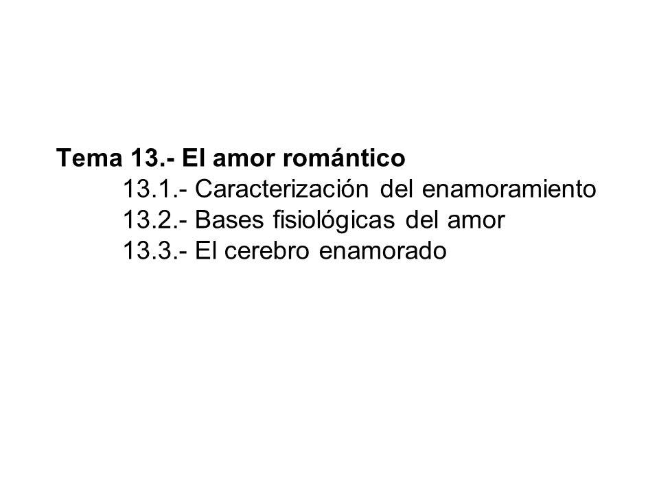 13.1.- Caracterización del enamoramiento ¿Qué es estar enamorado.