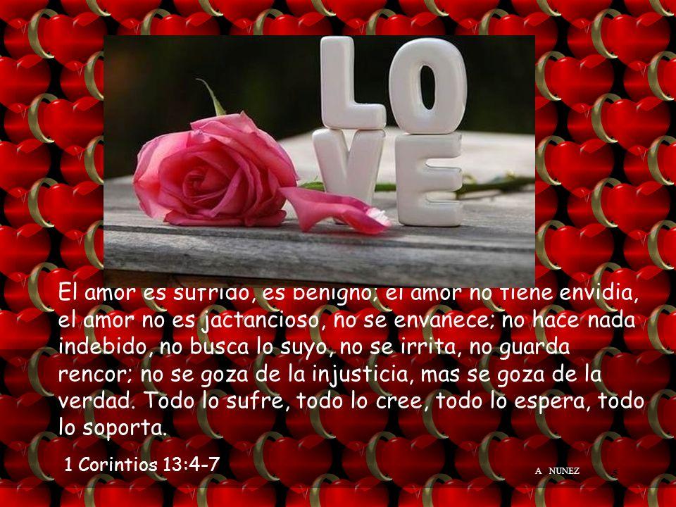 ADELA NUNEZ4 Para descubrir el secreto del éxito del amor para toda la vida, vamos a leer: