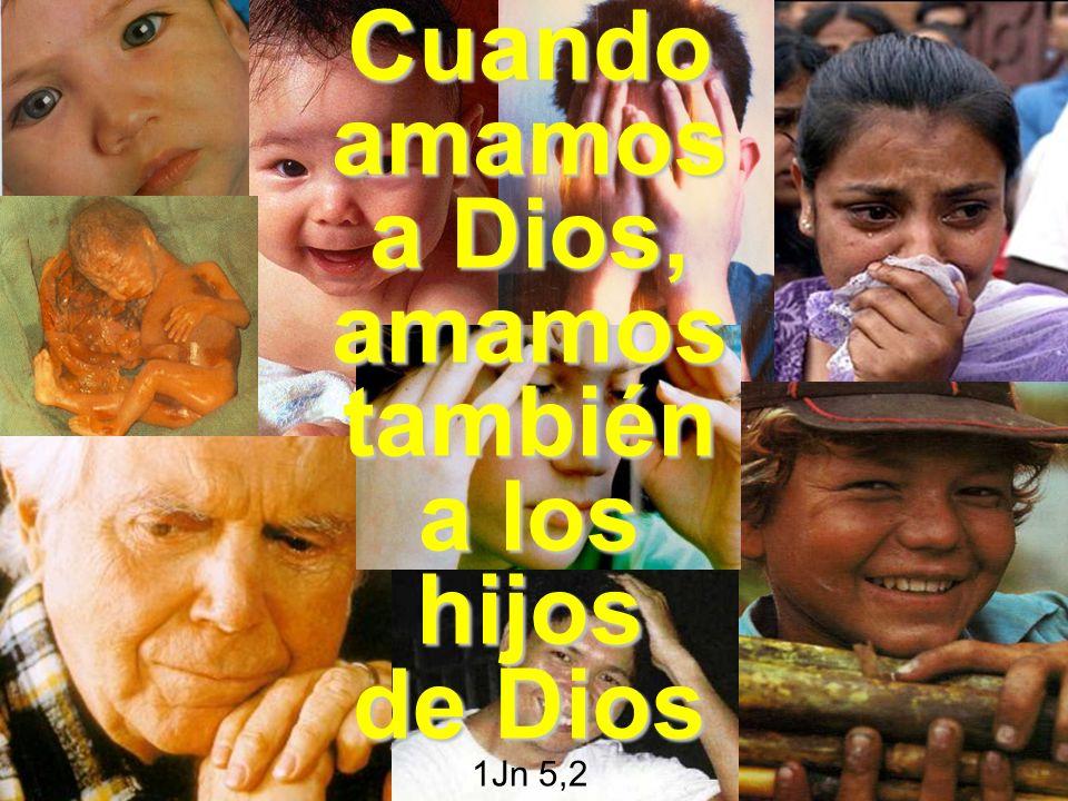 Cuando amamos a Dios, amamos también a los hijos de Dios Cuando amamos a Dios, amamos también a los hijos de Dios 1Jn 5,2