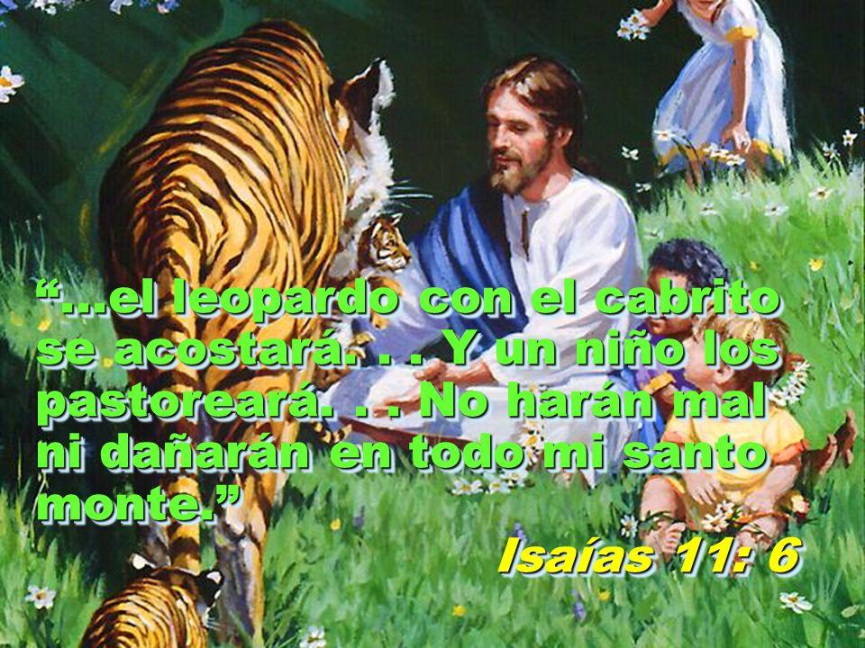 ...el leopardo con el cabrito se acostará... Y un niño los pastoreará... No harán mal ni dañarán en todo mi santo monte. Isaías 11: 6 Isaías 11: 6...e