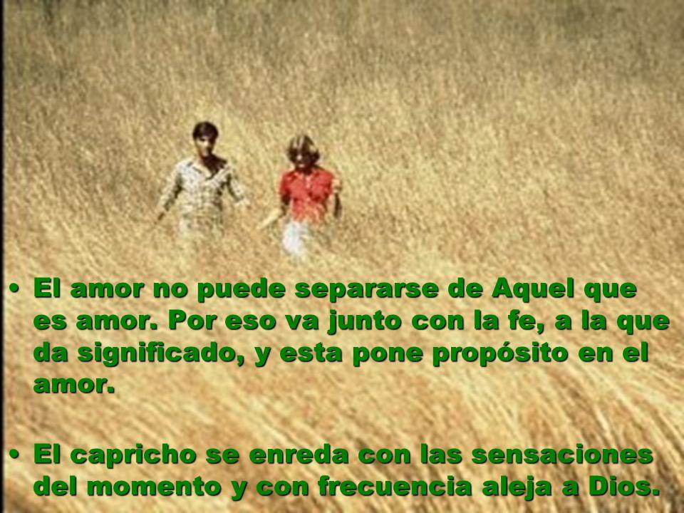 El amor no puede separarse de Aquel que es amor. Por eso va junto con la fe, a la que da significado, y esta pone propósito en el amor.El amor no pued