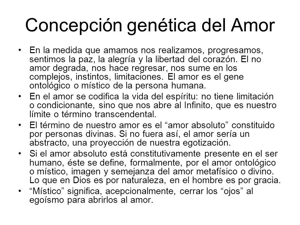 Concepción genética del Amor En la medida que amamos nos realizamos, progresamos, sentimos la paz, la alegría y la libertad del corazón. El no amor de