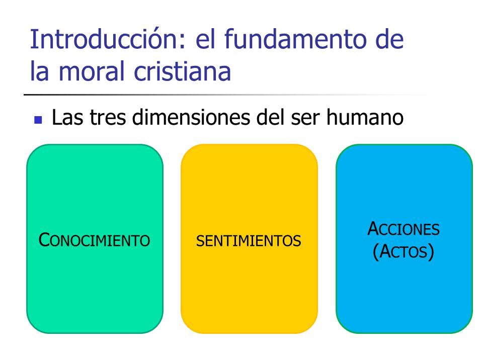 Introducción: el fundamento de la moral cristiana Las tres dimensiones del ser humano C ONOCIMIENTOSENTIMIENTOS A CCIONES (A CTOS )