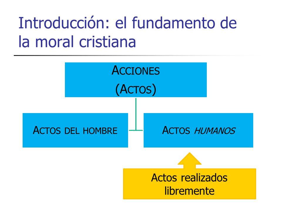 Introducción: el fundamento de la moral cristiana A CCIONES (A CTOS ) A CTOS DEL HOMBRE A CTOS HUMANOS Actos realizados libremente