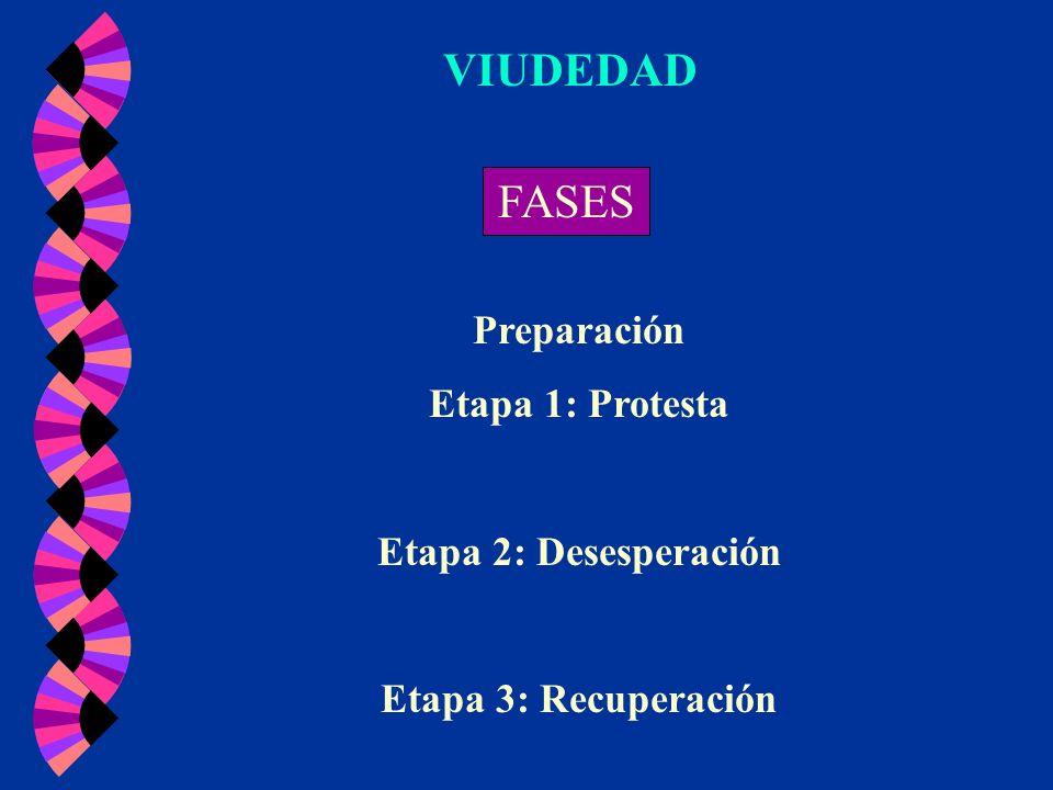 VIUDEDAD FASES Preparación Etapa 1: Protesta Etapa 2: Desesperación Etapa 3: Recuperación