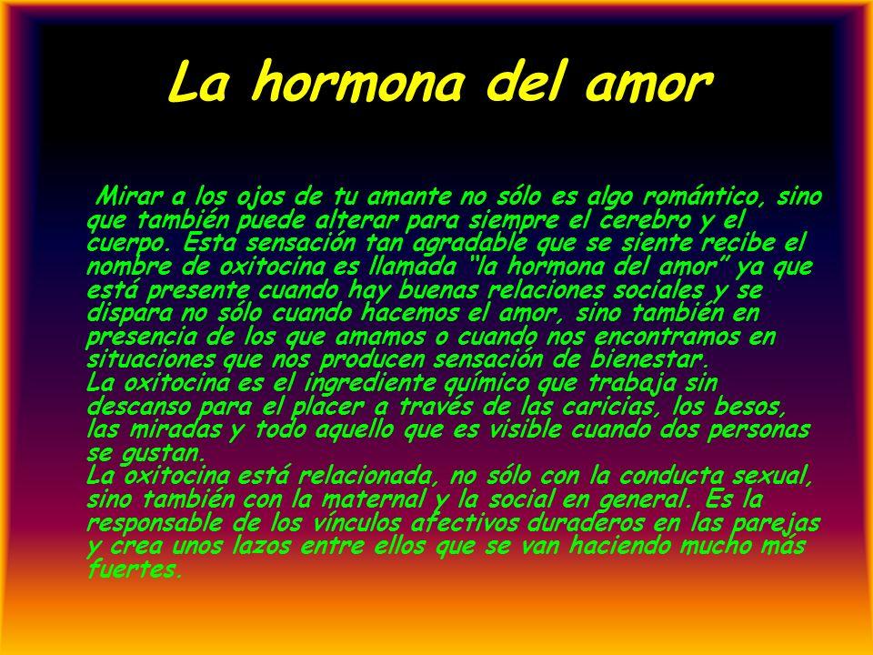 La hormona del amor Mirar a los ojos de tu amante no sólo es algo romántico, sino que también puede alterar para siempre el cerebro y el cuerpo. Esta