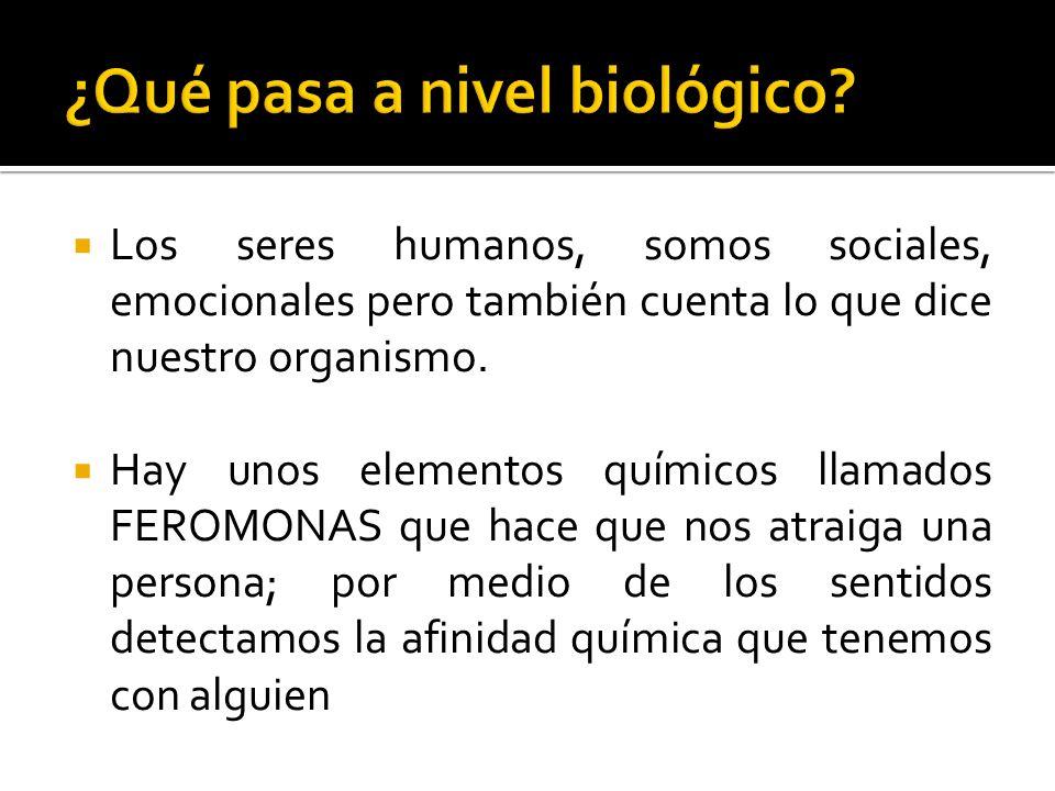 Los seres humanos, somos sociales, emocionales pero también cuenta lo que dice nuestro organismo. Hay unos elementos químicos llamados FEROMONAS que h