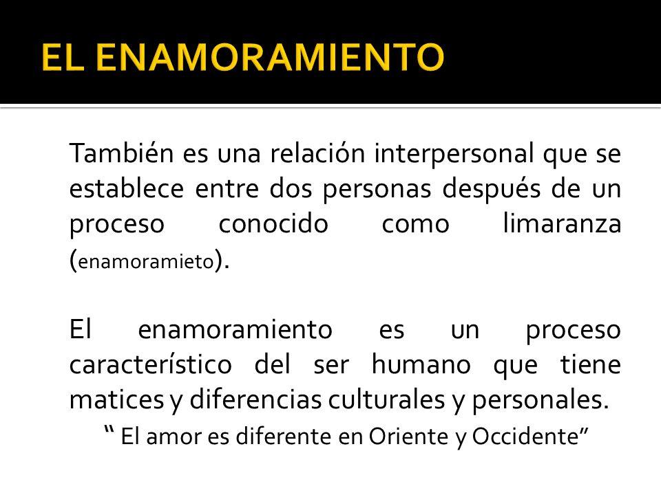 También es una relación interpersonal que se establece entre dos personas después de un proceso conocido como limaranza ( enamoramieto ). El enamorami