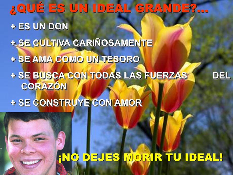 ¿QUÉ ES UN IDEAL GRANDE?... ¿QUÉ ES UN IDEAL GRANDE?... + ES UN DON + ES UN DON + SE CULTIVA CARIÑOSAMENTE + SE CULTIVA CARIÑOSAMENTE + SE AMA COMO UN