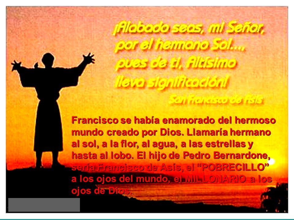 Francisco se había enamorado del hermoso mundo creado por Dios. Llamaría hermano al sol, a la flor, al agua, a las estrellas y hasta al lobo. El hijo