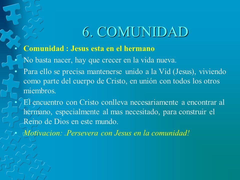 6.COMUNIDAD Comunidad : Jesus esta en el hermano No basta nacer, hay que crecer en la vida nueva.