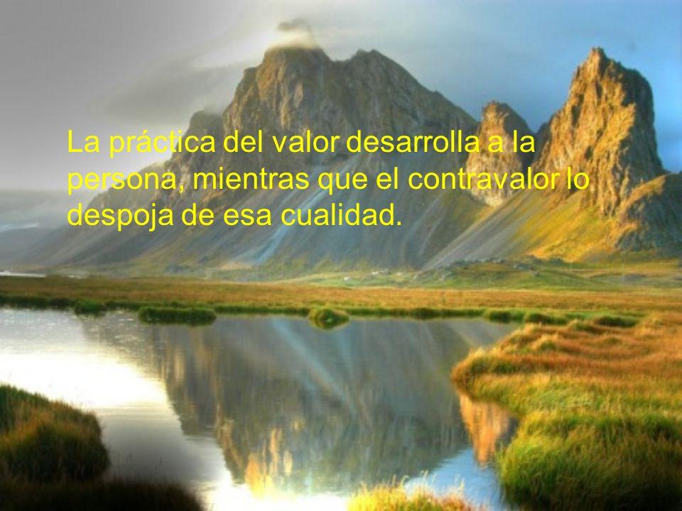 VALOR DEL AUTODOMINIO Es el valor del Autodominio ayuda a controlar el carácter.Es el valor del Autodominio ayuda a controlar el carácter.
