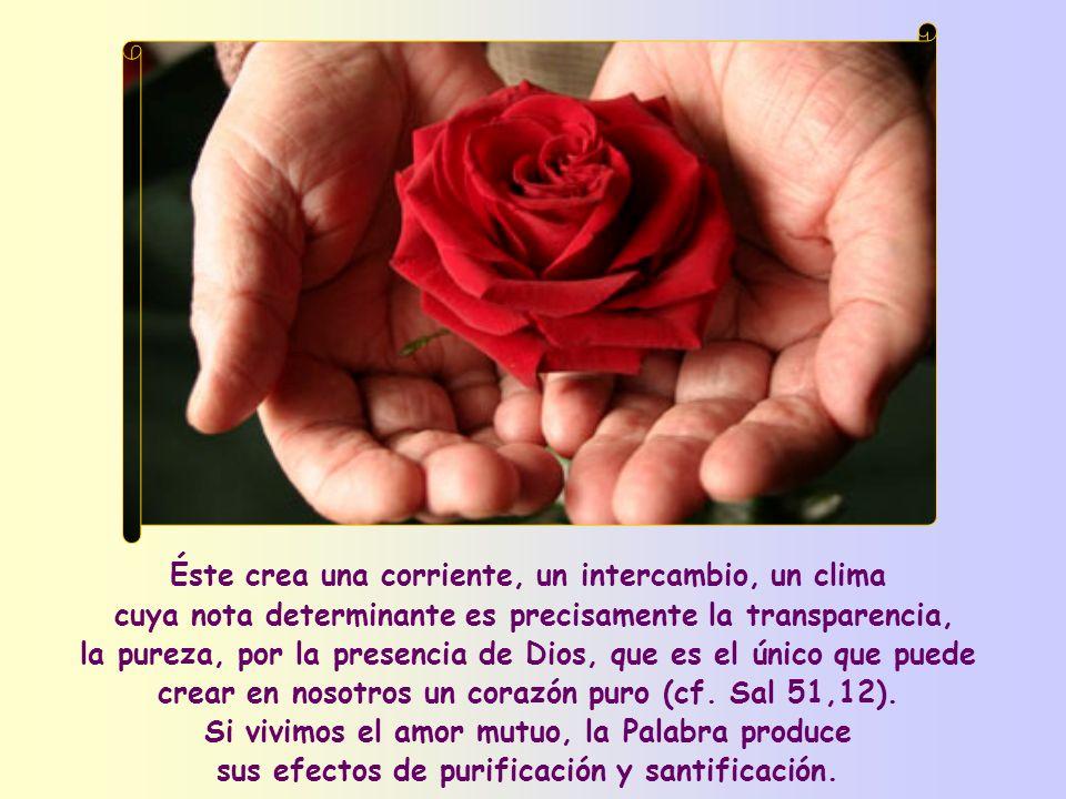 Pero hay un amor que Jesús nos recomienda y que nos permite vivir esta bienaventuranza: el amor recíproco, el amor de quien está dispuesto a dar la vi
