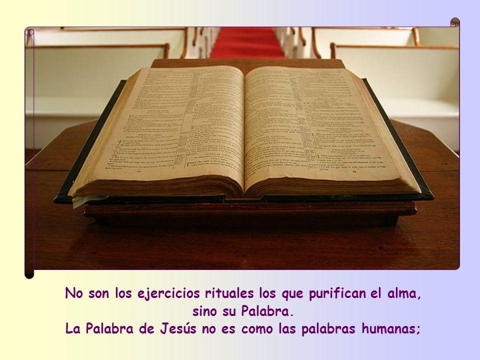 Ante todo, según Jesús, hay un medio excelente de purificación: