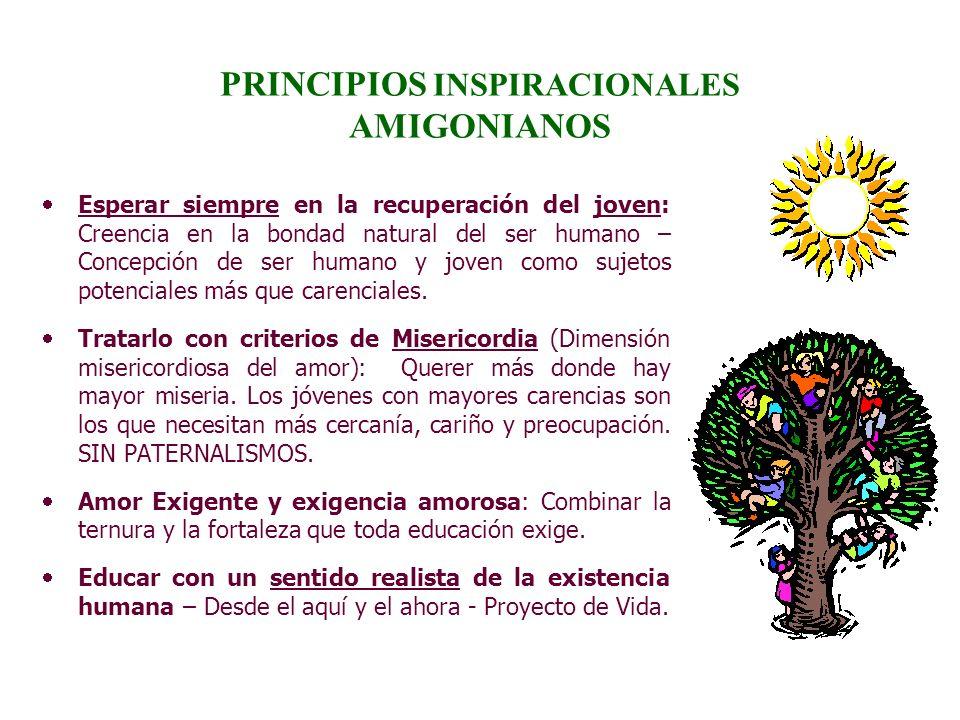 PRINCIPIOS INSPIRACIONALES AMIGONIANOS Esperar siempre en la recuperación del joven: Creencia en la bondad natural del ser humano – Concepción de ser