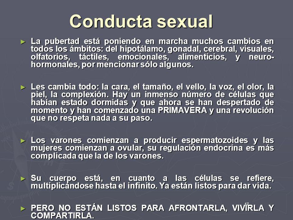 17 Conducta sexual La pubertad está poniendo en marcha muchos cambios en todos los ámbitos: del hipotálamo, gonadal, cerebral, visuales, olfatorios, t