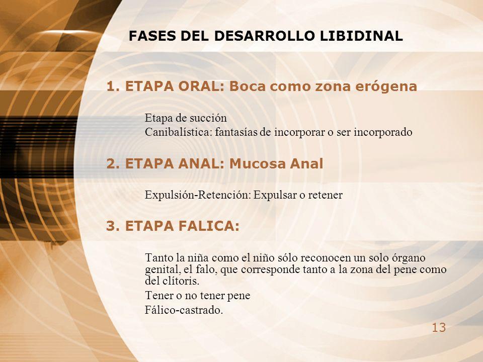13 FASES DEL DESARROLLO LIBIDINAL 1. ETAPA ORAL: Boca como zona erógena Etapa de succión Canibalística: fantasías de incorporar o ser incorporado 2. E