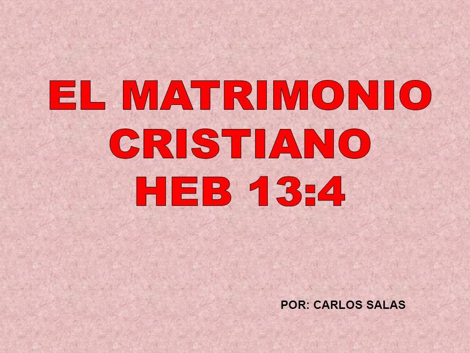 POR: CARLOS SALAS