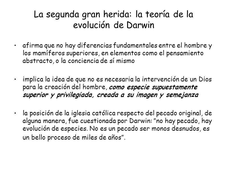 La segunda gran herida: la teoría de la evolución de Darwin afirma que no hay diferencias fundamentales entre el hombre y los mamíferos superiores, en