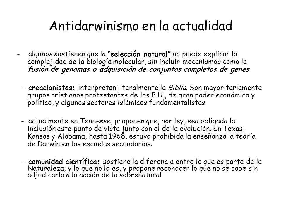 Antidarwinismo en la actualidad - algunos sostienen que la selección natural no puede explicar la complejidad de la biología molecular, sin incluir me