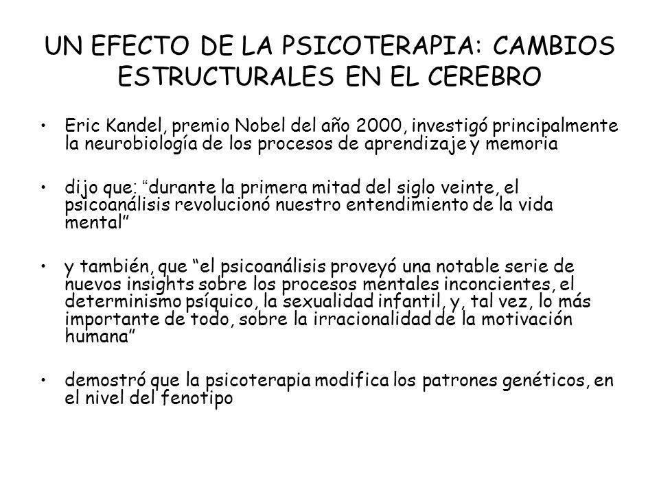 UN EFECTO DE LA PSICOTERAPIA: CAMBIOS ESTRUCTURALES EN EL CEREBRO Eric Kandel, premio Nobel del año 2000, investigó principalmente la neurobiología de