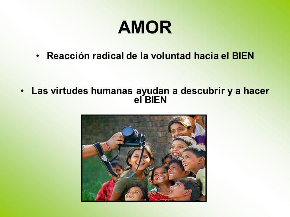 AMOR Reacción radical de la voluntad hacia el BIEN Las virtudes humanas ayudan a descubrir y a hacer el BIEN