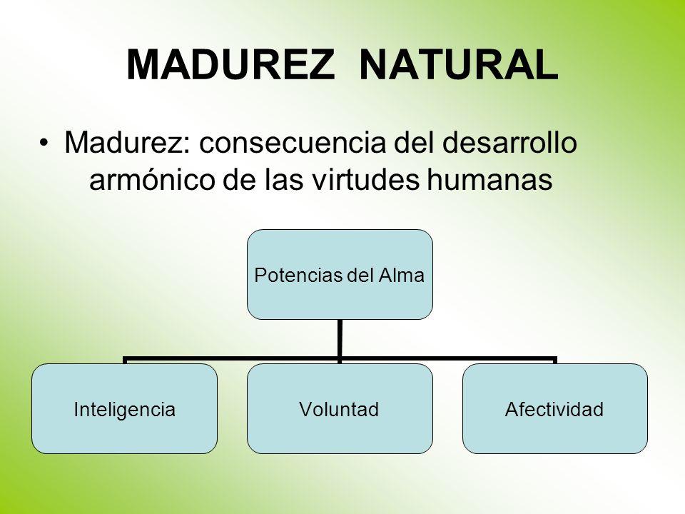 MADUREZ NATURAL Madurez: consecuencia del desarrollo armónico de las virtudes humanas Potencias del Alma InteligenciaVoluntadAfectividad