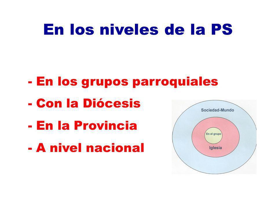 En los niveles de la PS - En los grupos parroquiales - Con la Diócesis - En la Provincia - A nivel nacional