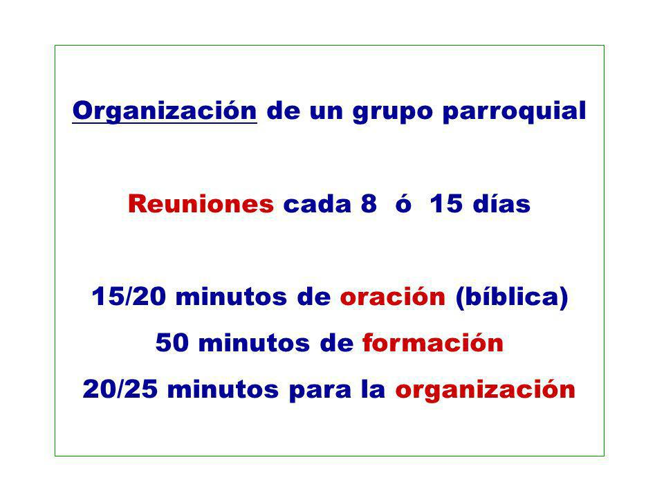 Organización de un grupo parroquial Reuniones cada 8 ó 15 días 15/20 minutos de oración (bíblica) 50 minutos de formación 20/25 minutos para la organi