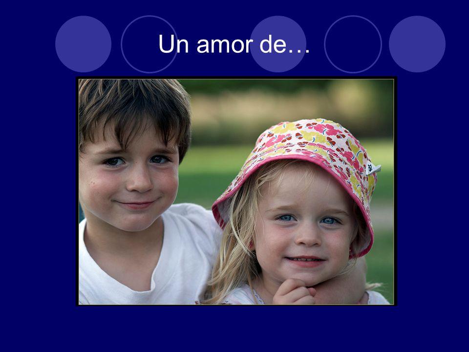 LOS TIPOS DE AMOR Anteriormente vimos en forma ordenada el: 1.Amor idealizado 2.Amor sensual o terrenal 3.Amor místico 4.Amor filial 5.Amor fraternal