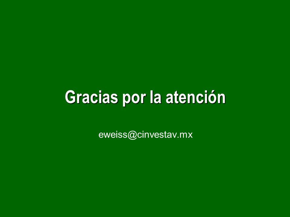 Gracias por la atención Gracias por la atención eweiss@cinvestav.mx