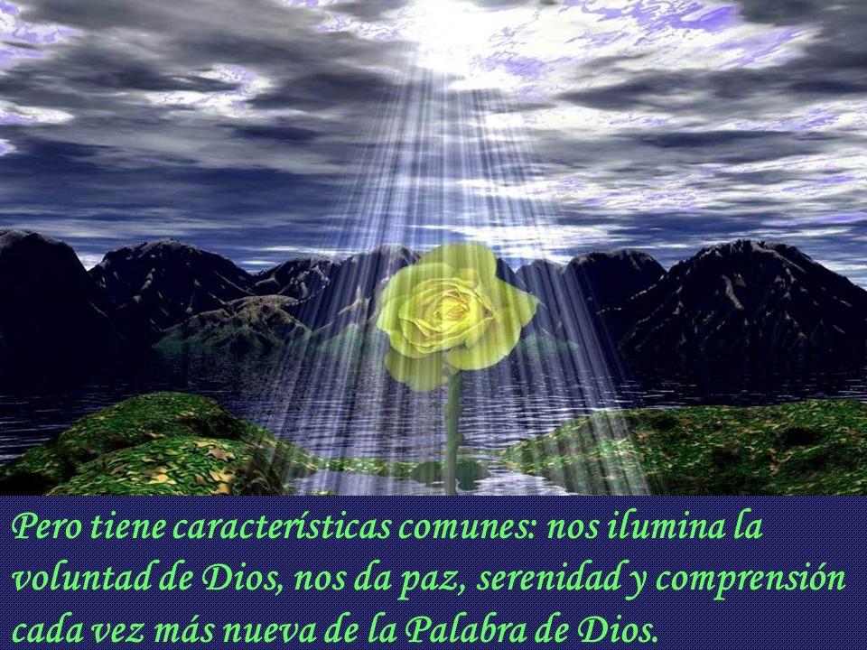 Esta luz, este conocimiento amoroso de Dios es, por tanto, el sello, la prueba del verdadero amor. Y se puede experimentar de varios modos, por que en