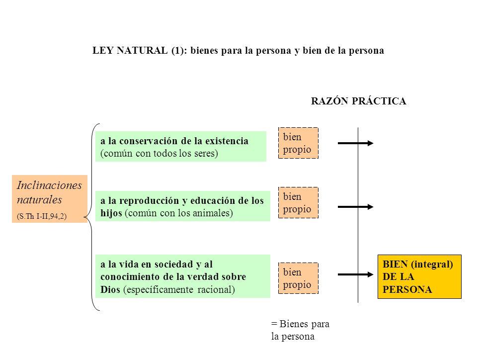 Inclinaciones naturales (S.Th I-II,94,2) a la conservación de la existencia (común con todos los seres) a la reproducción y educación de los hijos (co