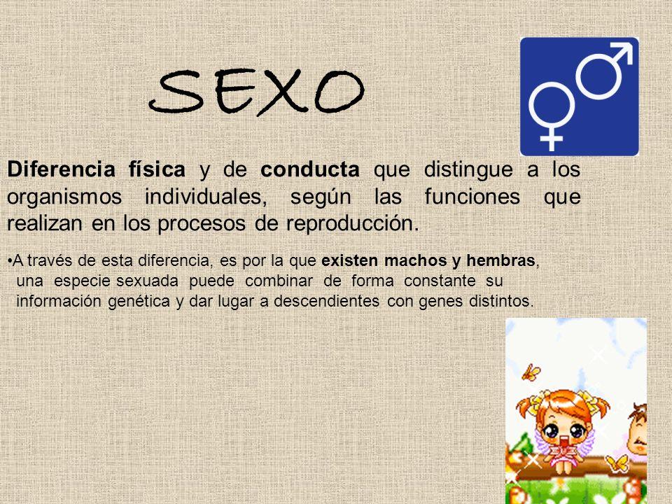 SEXO Diferencia física y de conducta que distingue a los organismos individuales, según las funciones que realizan en los procesos de reproducción. A