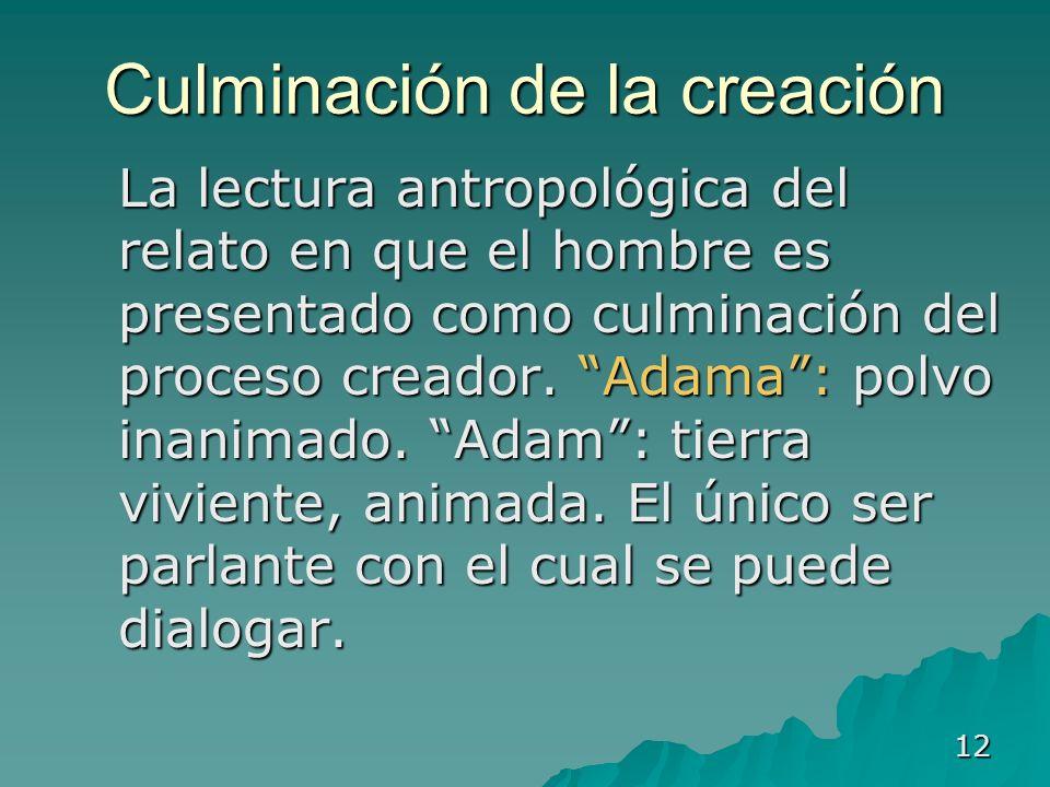 12 Culminación de la creación La lectura antropológica del relato en que el hombre es presentado como culminación del proceso creador. Adama: polvo in