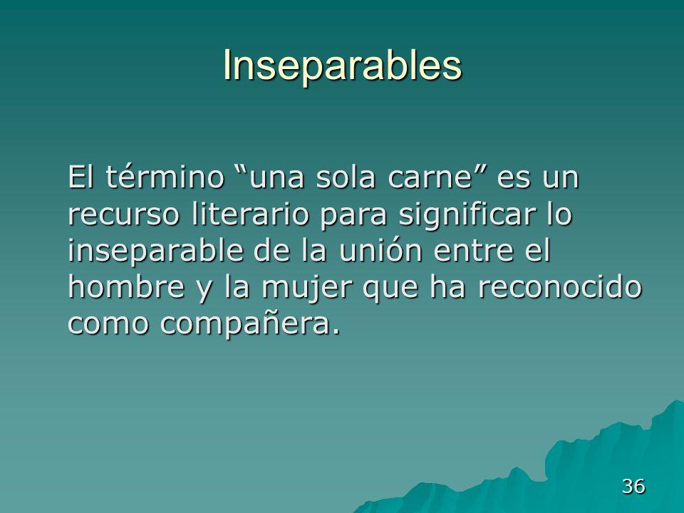 36 Inseparables El término una sola carne es un recurso literario para significar lo inseparable de la unión entre el hombre y la mujer que ha reconoc