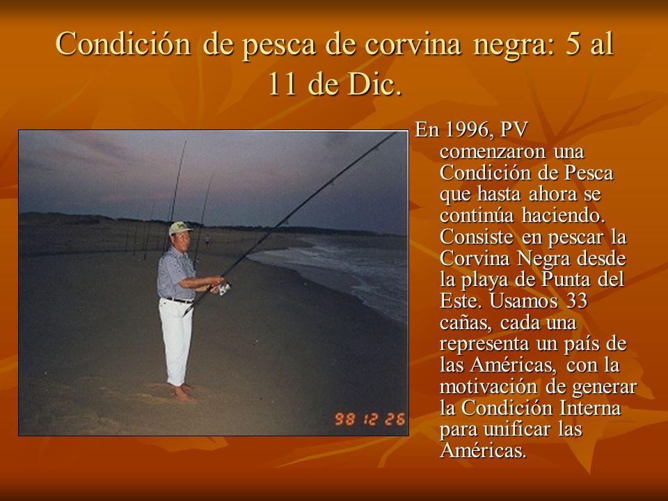 Condición de pesca de corvina negra: 5 al 11 de Dic. En 1996, PV comenzaron una Condición de Pesca que hasta ahora se continúa haciendo. Consiste en p