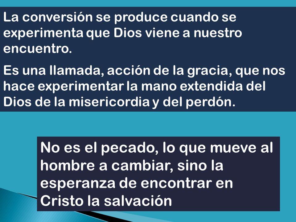 Toda la Iglesia tiene que ponerse en actitud de conversión.