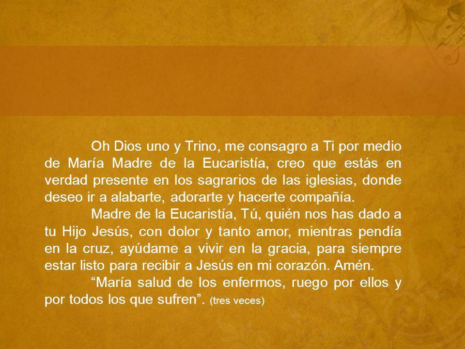 Oh Dios uno y Trino, me consagro a Ti por medio de María Madre de la Eucaristía, creo que estás en verdad presente en los sagrarios de las iglesias, donde deseo ir a alabarte, adorarte y hacerte compañía.