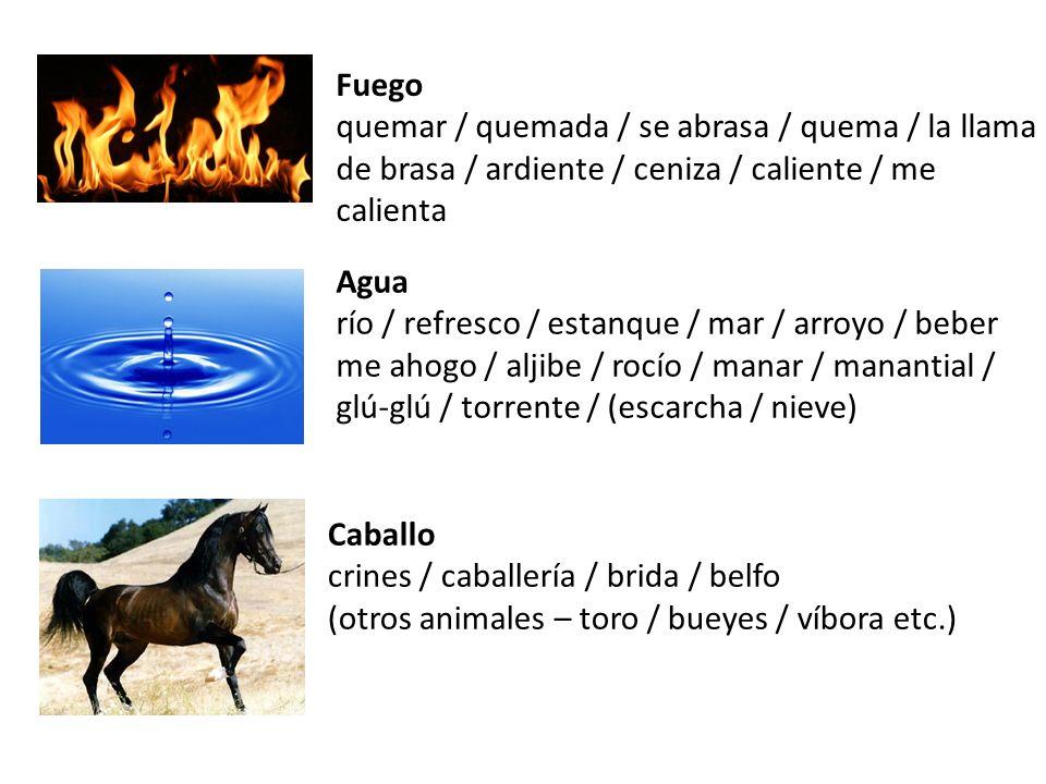 Fuego quemar / quemada / se abrasa / quema / la llama de brasa / ardiente / ceniza / caliente / me calienta Agua río / refresco / estanque / mar / arr