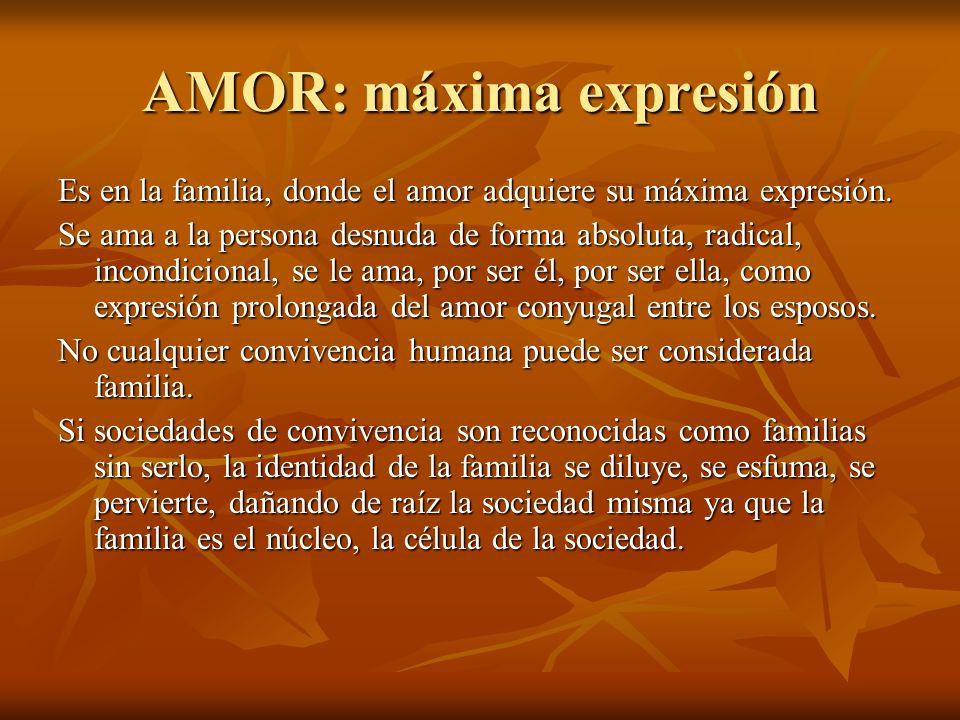 AMOR: máxima expresión Es en la familia, donde el amor adquiere su máxima expresión. Se ama a la persona desnuda de forma absoluta, radical, incondici