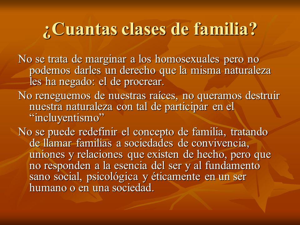 ¿Cuantas clases de familia? No se trata de marginar a los homosexuales pero no podemos darles un derecho que la misma naturaleza les ha negado: el de