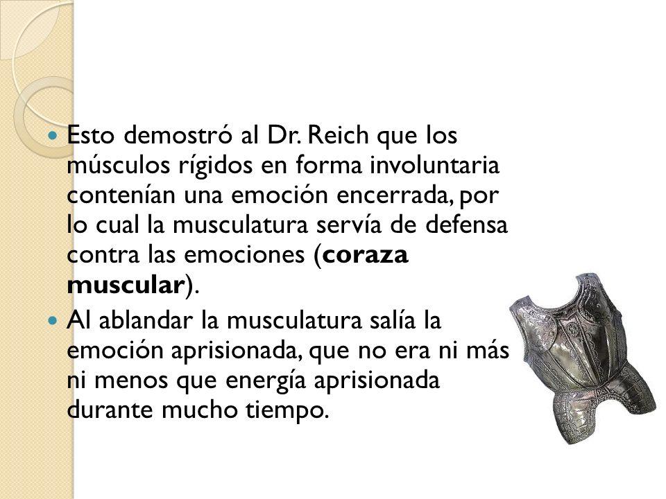 Esto demostró al Dr. Reich que los músculos rígidos en forma involuntaria contenían una emoción encerrada, por lo cual la musculatura servía de defens