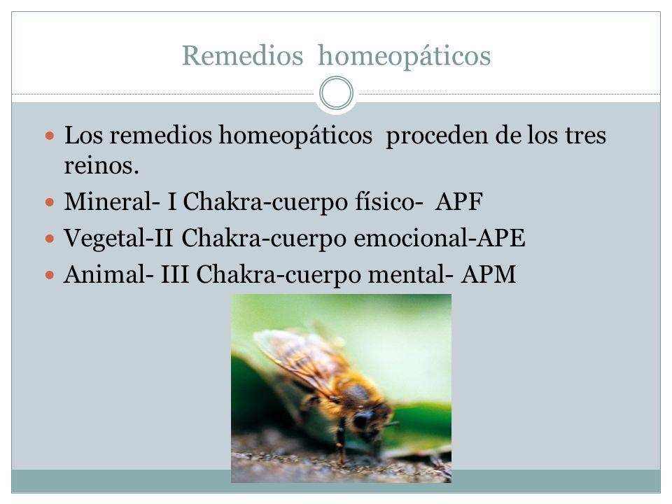 Remedios homeopáticos Los remedios homeopáticos proceden de los tres reinos. Mineral- I Chakra-cuerpo físico- APF Vegetal-II Chakra-cuerpo emocional-A