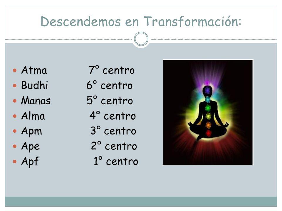 Descendemos en Transformación: Atma 7° centro Budhi 6° centro Manas 5° centro Alma 4° centro Apm 3° centro Ape 2° centro Apf 1° centro