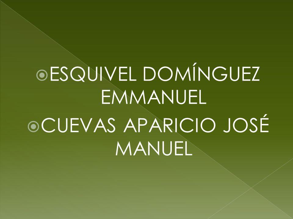 ESQUIVEL DOMÍNGUEZ EMMANUEL CUEVAS APARICIO JOSÉ MANUEL