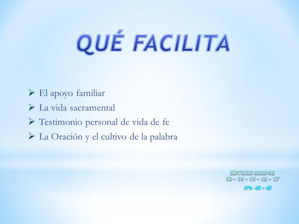 El apoyo familiar La vida sacramental Testimonio personal de vida de fe La Oración y el cultivo de la palabra