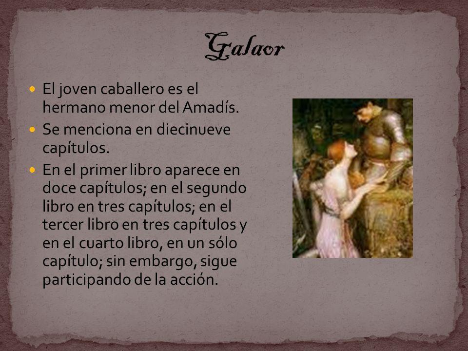 El joven caballero es el hermano menor del Amadís. Se menciona en diecinueve capítulos. En el primer libro aparece en doce capítulos; en el segundo li