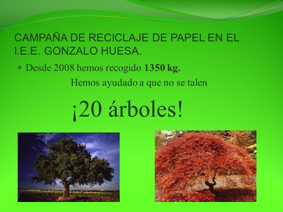 CAMPAÑA DE RECICLAJE DE PAPEL EN EL I.E.E. GONZALO HUESA. Desde 2008 hemos recogido 1350 kg. Hemos ayudado a que no se talen ¡20 árboles!